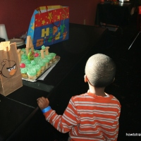 Happy Birds {An Angry Bird Series} Birthday Party