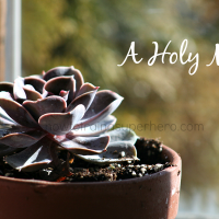A Holy Mess-a word of encouragement for the Mama's